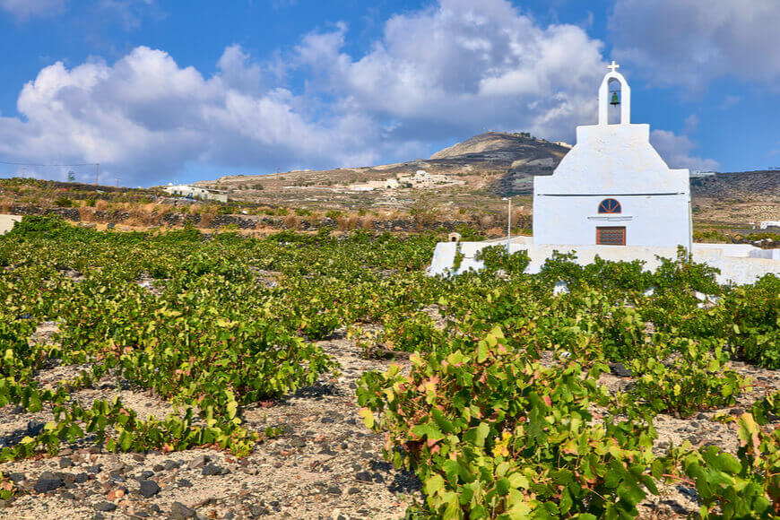The 7 Best Wineries to Explore in Santorini - Boutari Winery Santorini - Kamari Tours Excursions