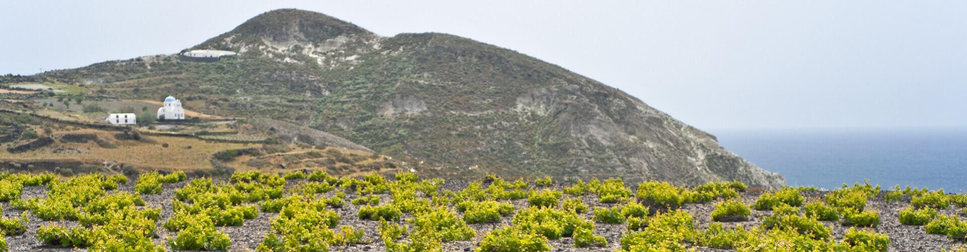 The 7 Best Wineries to Explore in Santorini - Kamari Tours Excursions